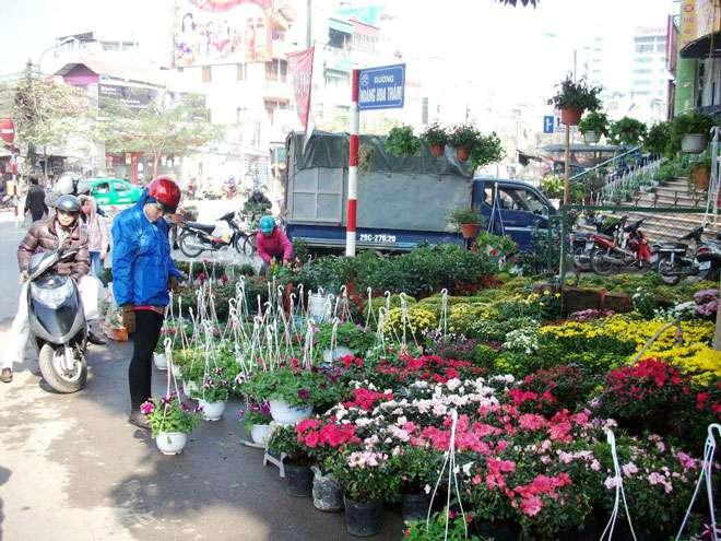 """Hà Nội: """"Đường hoa"""" Hoàng Hoa Thám ngập tràn sắc màu đón xuân"""